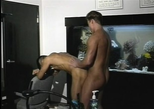 Erotic male lovers moan with pleasure during sensual sex session