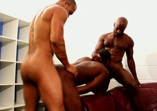 Two black cocks and scarcely any raunchy happy-go-lucky man to service them both
