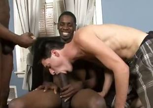 This week at BlacksOnBoys.com Johhny Boy brings in a friend to help with the lifting.  His name is Peanut and he likes to have some beguilement with the uninspiring boys too.  Speaking of uninspiring boys, Nikola is their next victim.  Nikola is a little weird.  He from Russ