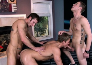 A threesome of hard gay cocks always provides for a hot threesome show