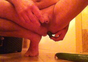 2 cucumbers Gurken komkommers