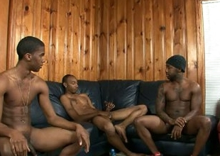 Black gays sit close to and vexillum warn off
