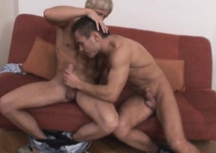 A pair of handsome dudes get freaky not later than a AC/DC threesome