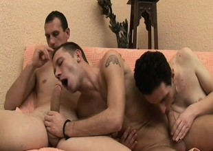 Lusty playboys plow each other's firm butts in a hot threesome