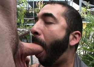 Horny bearded gay male slut sucks this tall guy's cock in public