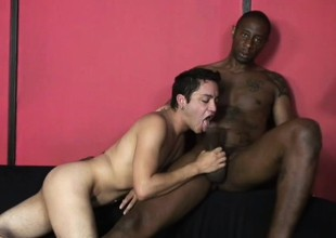 Horny Latino anent a hot body works his lips up and down a big black cock