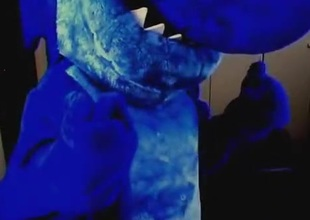Blueup Euchre in Euchre vs Orca Whale fursuit inflation blowup