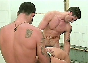 Three robust gay cubs were naked and on their way to the shower room...