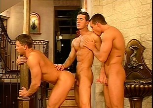 Gay conceited rollers solder up and have a hot threesome in the palace