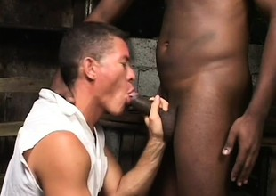 Waxen hunk gets his butt drilled by a hung black guy in a barn