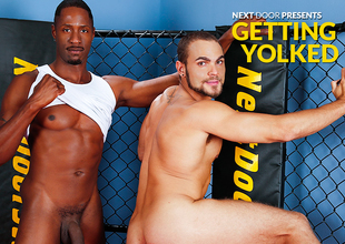 Brock Avery & Derek Maxum in Getting Yolked XXX Video